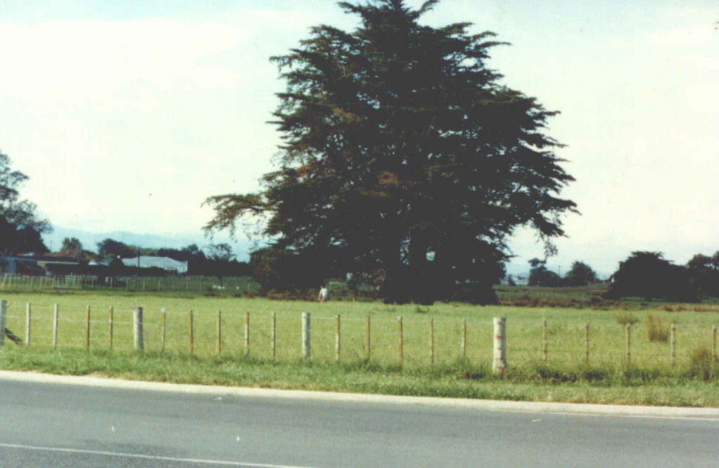 Totara College Dannevirke